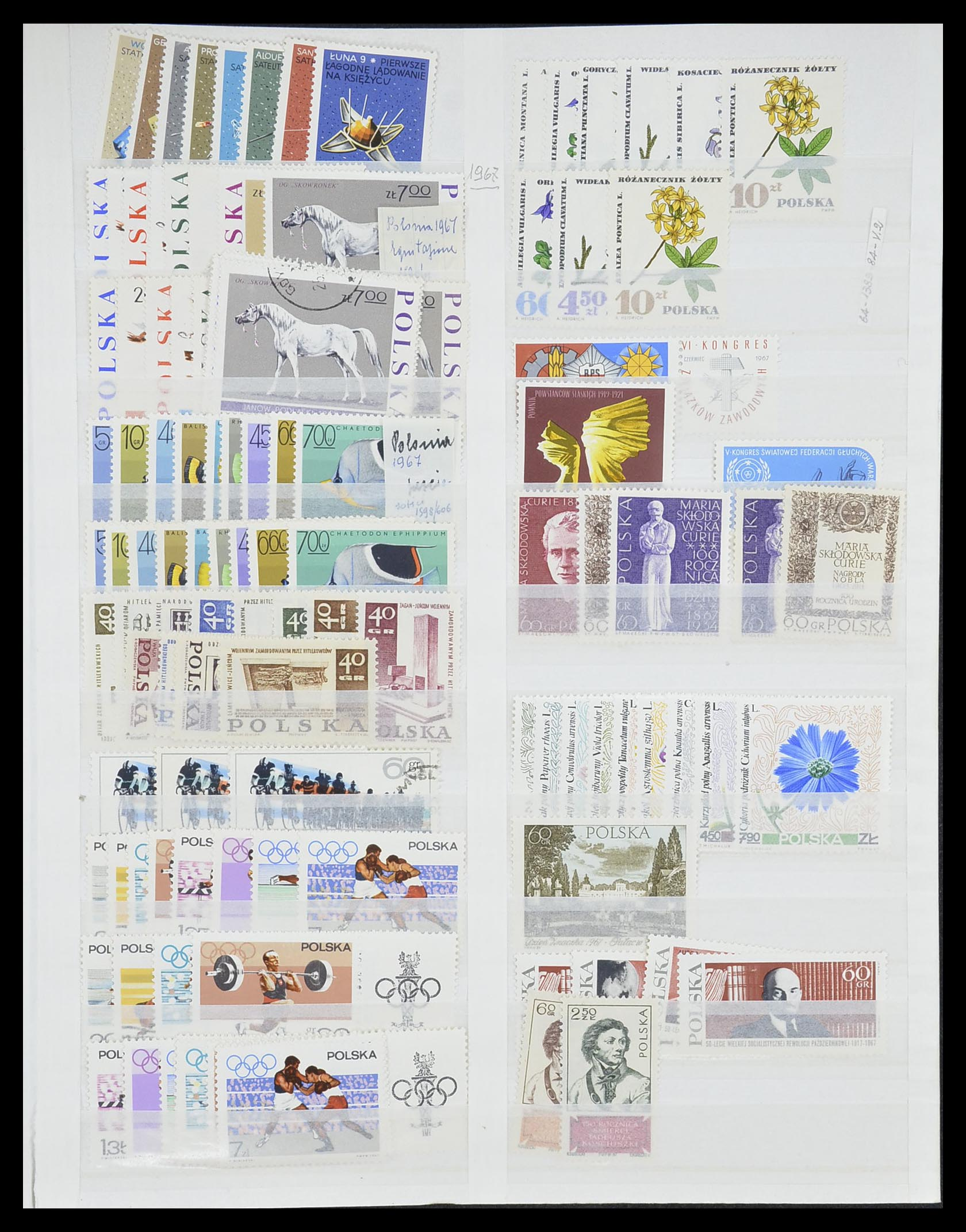 Lot 19131 - polen  -  Auktionshaus Christoph Gärtner GmbH & Co. KG 50th Auction Anniversary Auction - Day 5