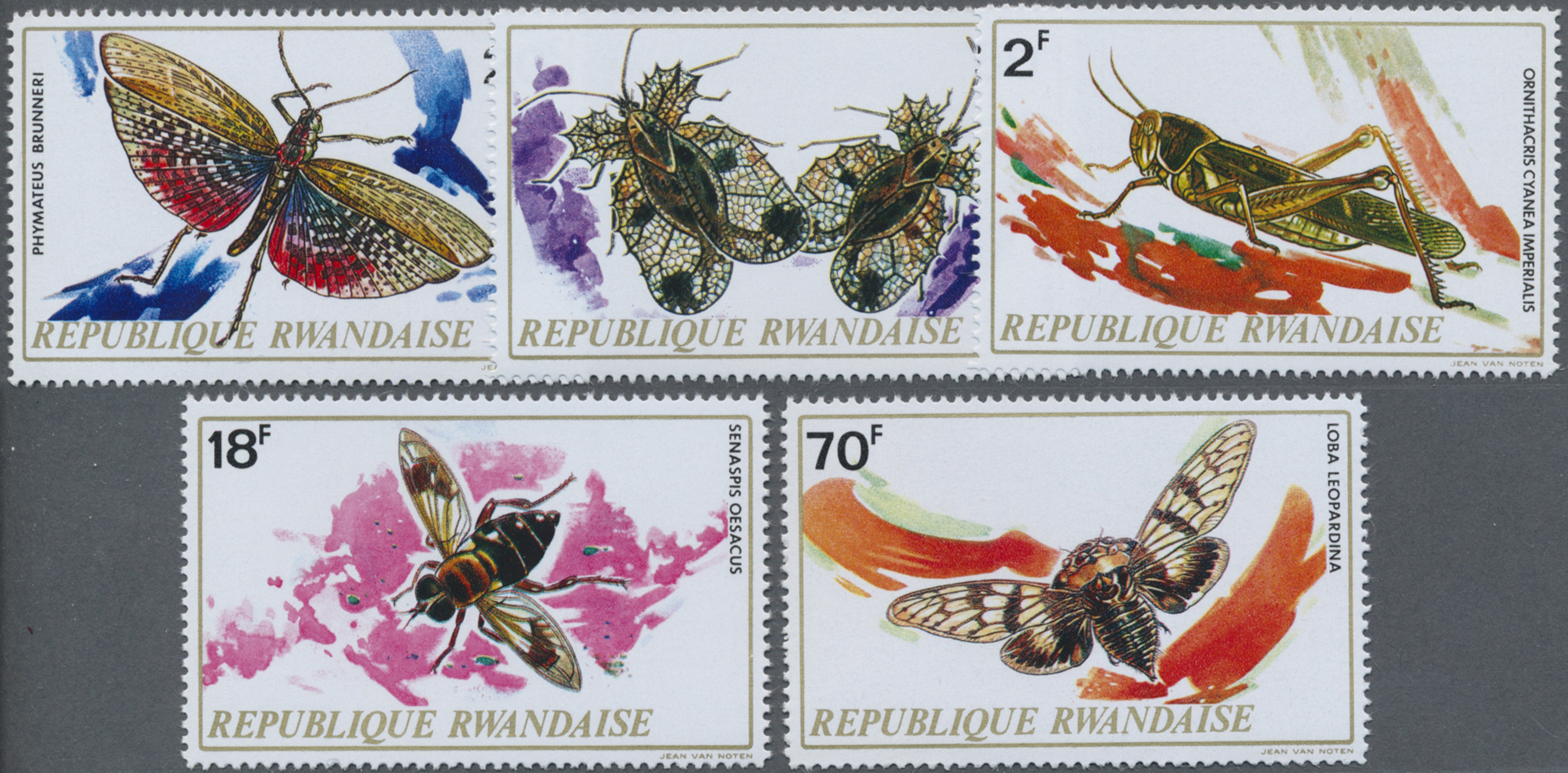 Lot 21149 - thematik: tiere-insekten / animals-insects  -  Auktionshaus Christoph Gärtner GmbH & Co. KG Sale #47 Collections: Overseas, Thematics, Europe