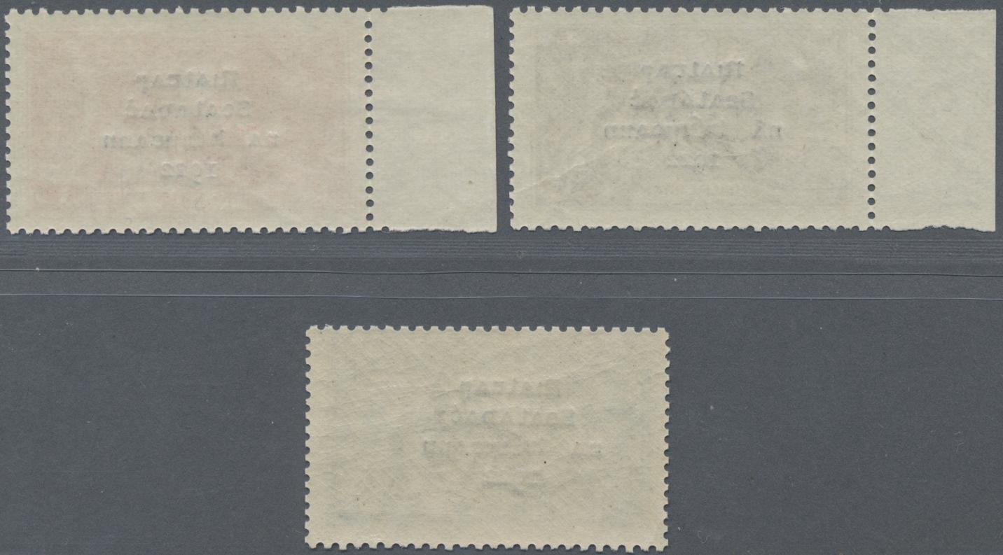 Lot 11660 - irland  -  Auktionshaus Christoph Gärtner GmbH & Co. KG Sale #46 Single lots Asia, Thematics, Overseas, Europe …