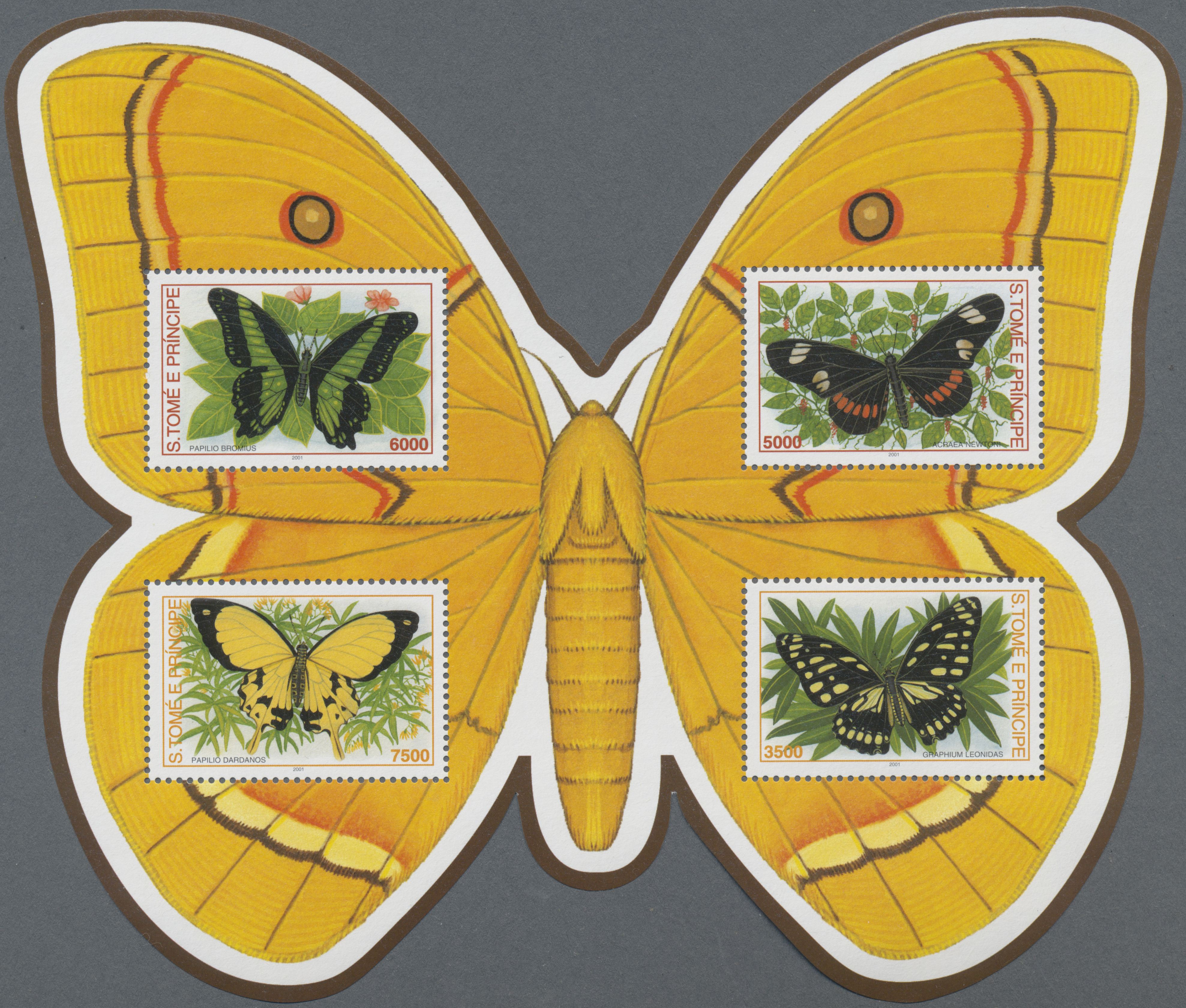 Lot 34885 - thematik: tiere-schmetterlinge / animals-butterflies  -  Auktionshaus Christoph Gärtner GmbH & Co. KG Sale #44 Collections Germany